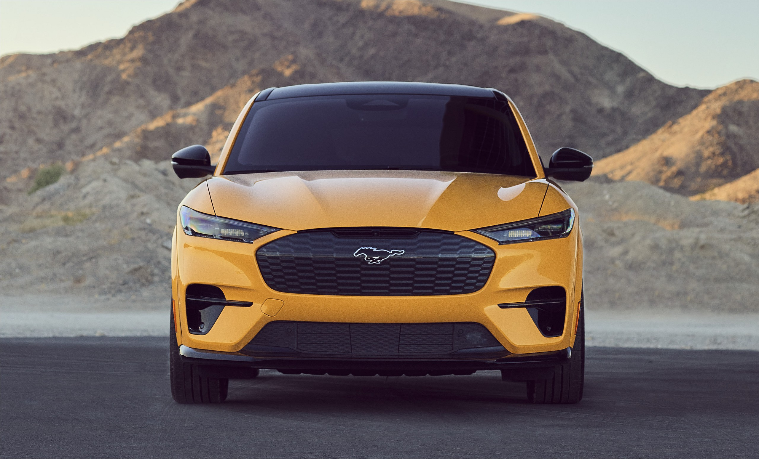 The 2021 Ford Mustang Mach E All Electric Suv Electric Hunter